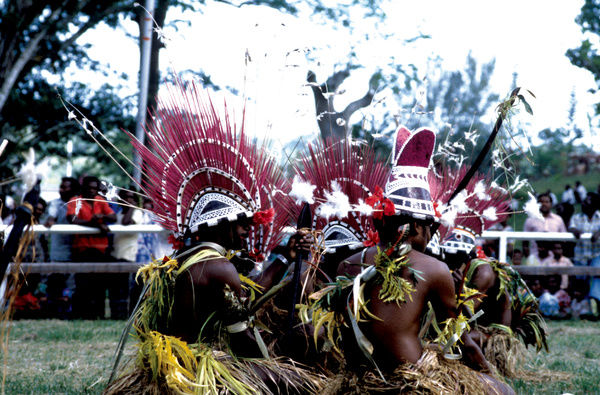 A group of men in traditional costume and headdress dance in a grassy area