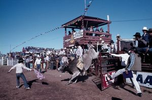 Alice Springs Rodeo. Ghan to Alice, 1978.