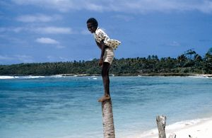 Boy on a tree stump. Taem Bifo Taem Nao - Time Before Time Now, 1980.