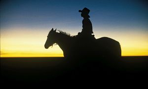 Colour image of a boy sitting on a horse at dawn, in silhouette.