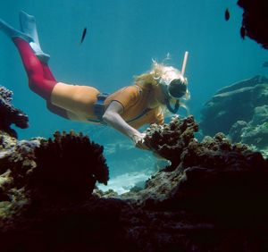 Snorkeling. Will the Great Barrier Reef Cure Claude Clough?, 1967.