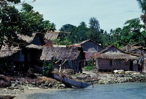 Thatched Houses. Solomon Islands, 1979.