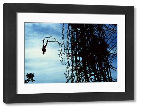 A colour image of a Vanuatuan man jumping off a tall wooden platform with vines attached to his ankle. the sky can be seen in the background of the image