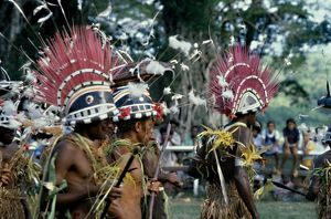 pacific islands/group islander men wearing traditional ceremonial